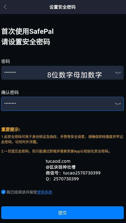 输入密码-注册教程-safepal币安智能链钱包